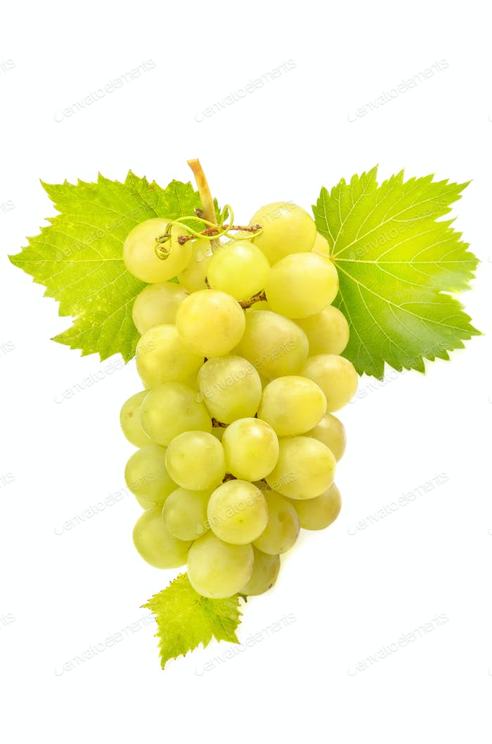 berries and a branch of grapes