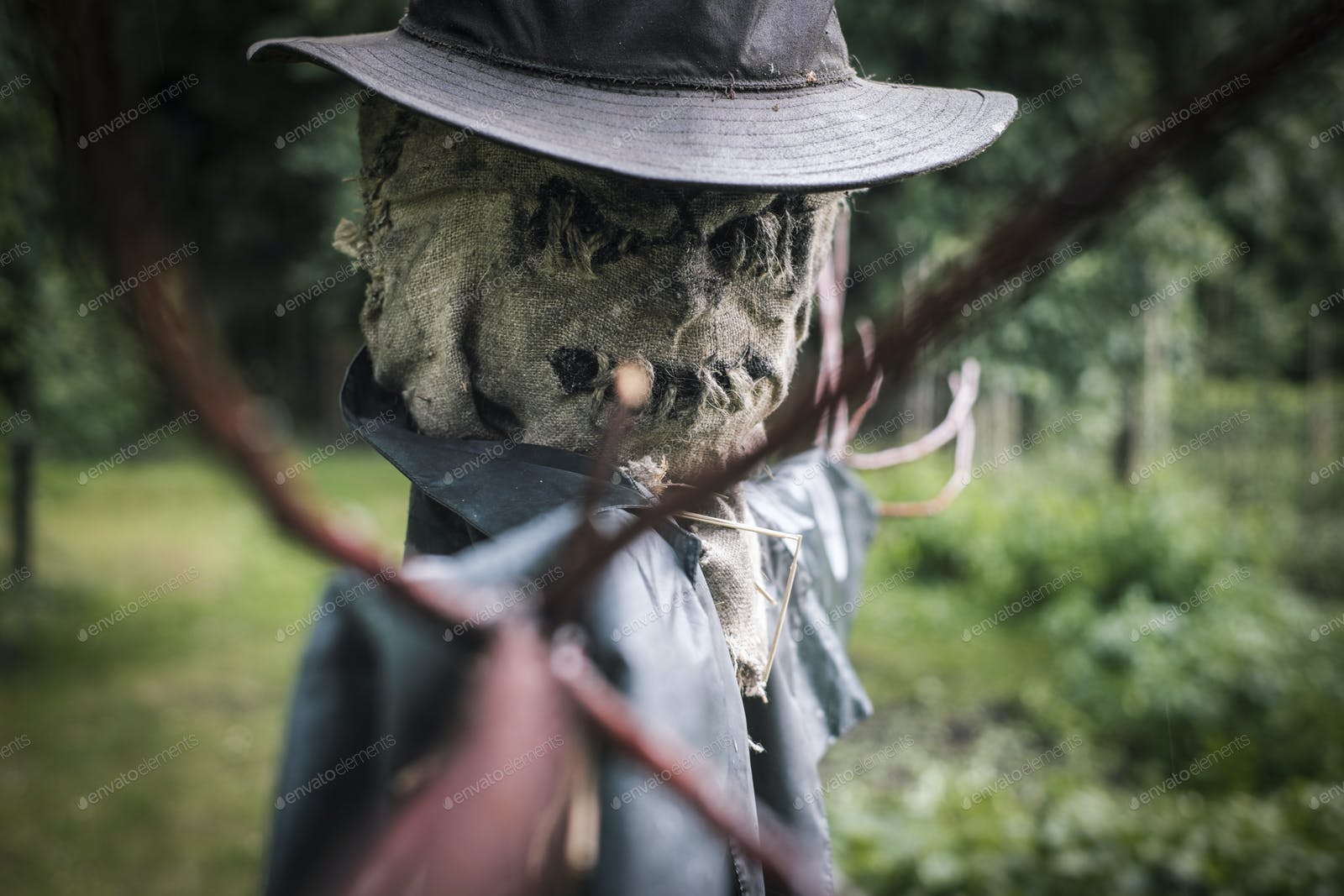 Scary scarecrow in a hat photo by ivankmit on Envato Elements