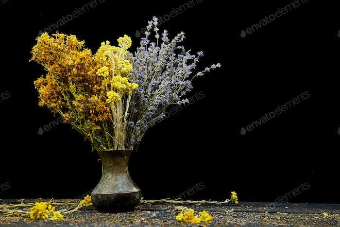 Dry herbs flower in vase