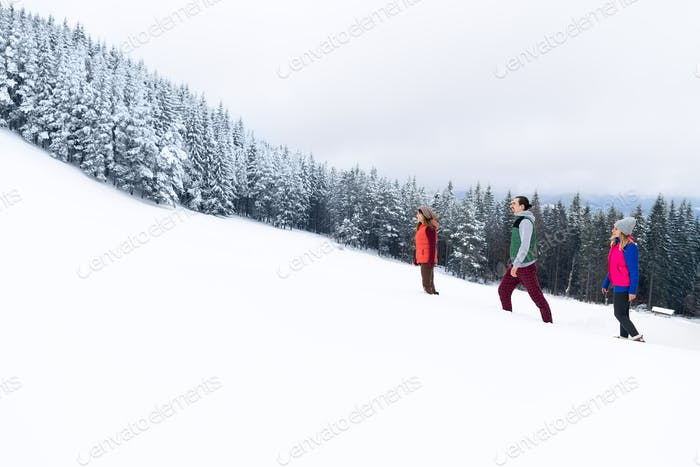 Friends Walking Winter Snow Mountain Forest, Young People Group Christmas Holiday Vacation