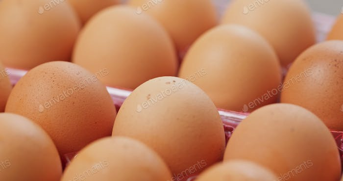 Pack of the chicken egg