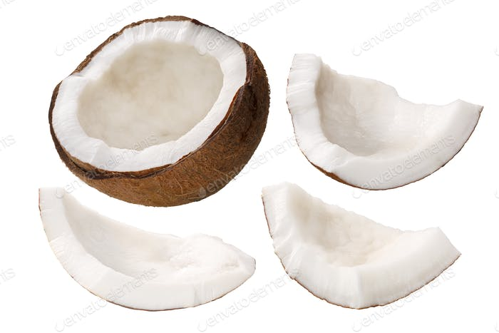 Coconut meat c. nucifera kernel, paths