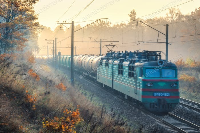 Moving freight train in beautiful forest in fog at sunrise