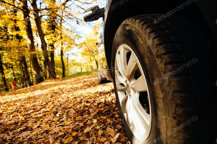Шины, установленные на автомобиле для бездорожья
