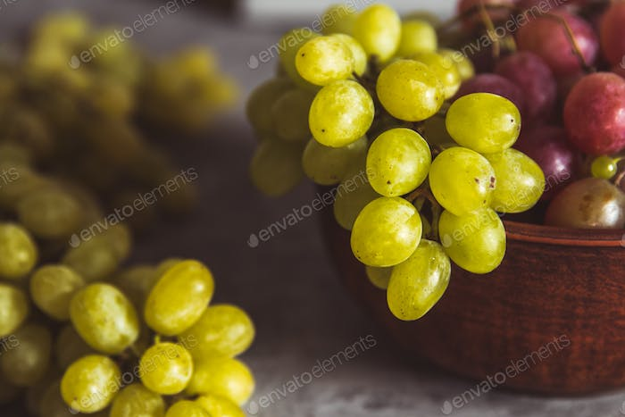 close-up of grapes on a plate on a gray background with drops of water