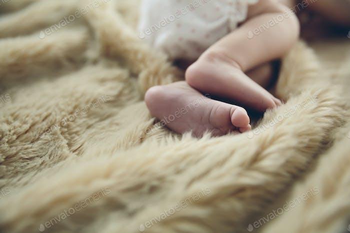 Detail of newborn baby feet