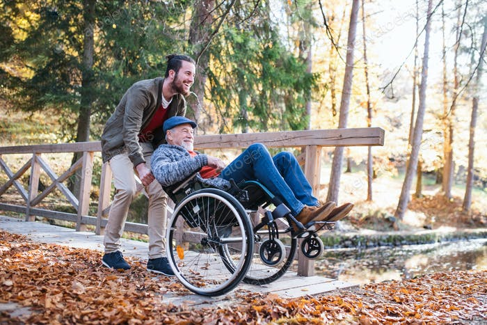 Senior father with wheelchair and his son on walk in nature