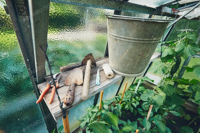Gardening tools in the greenhouse