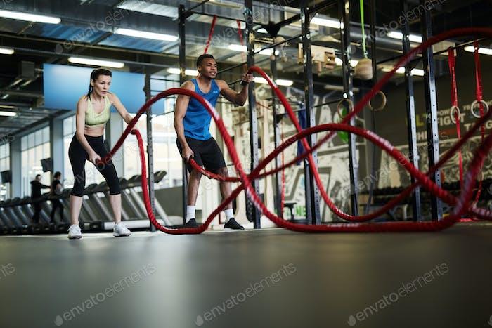 Battle Ropes Exercise