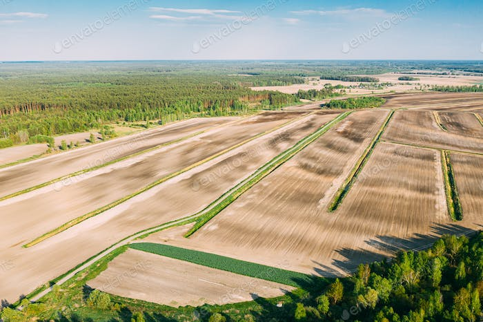 Aerial View Spring Empty Field With Windbreaks Landscape. Top View Of Field And Forest Belt. Drone