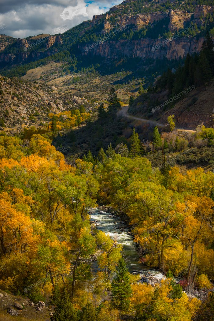 Wyoming Fall Colors
