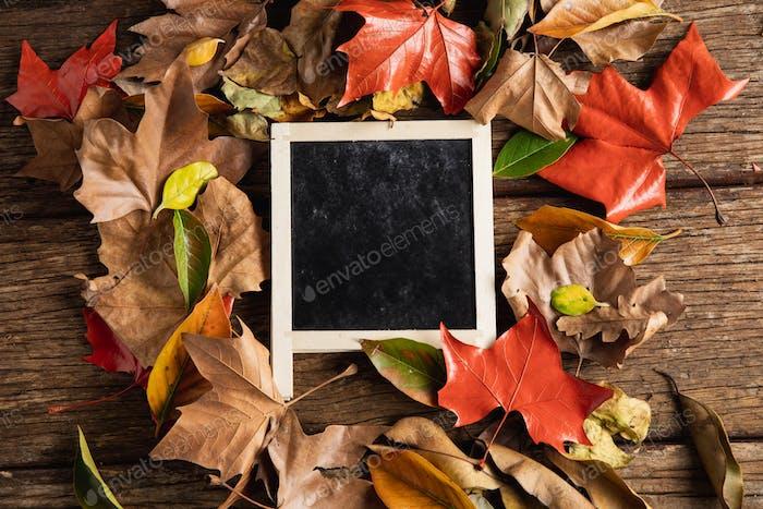 Herbstliche flache Lag mit Kreidetafel