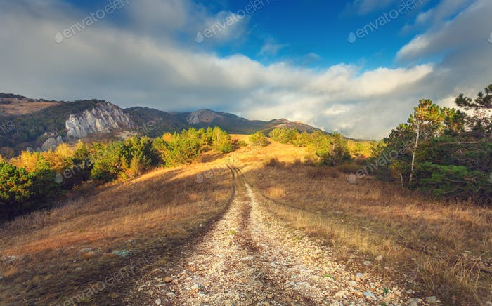 Mountain autumn landscape with road at sunset. Low clouds