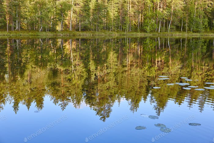 Finland landscape with lake and forest at sunset. Reflection