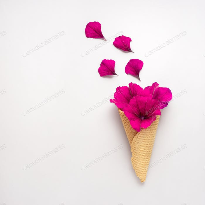 Flowers in cone.