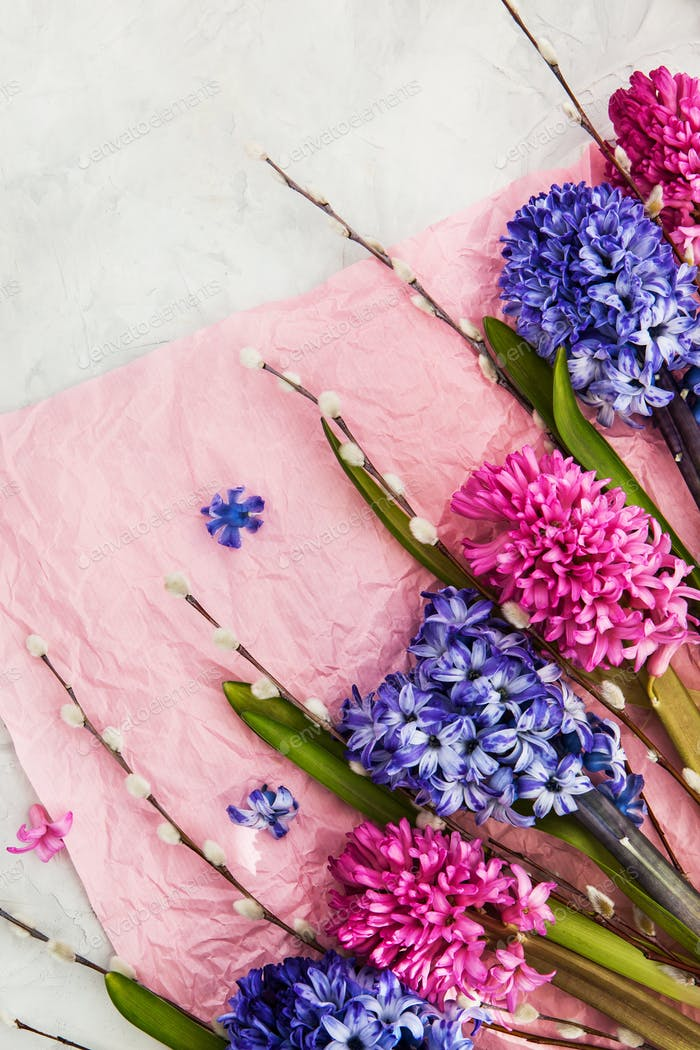 Bouquet of beautiful flowers - blue and pink hyacinths and willo