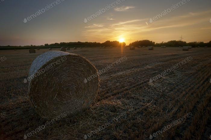 Hay Stacks Sunset