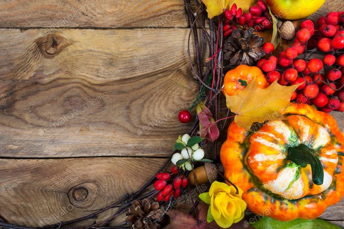 Thanksgiving background with decorative pumpkin and yellow rose