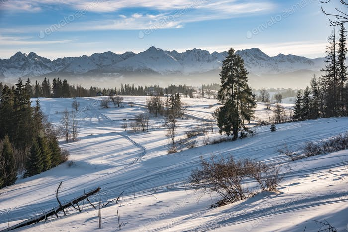 Winter landscape of High Tatra Mountains
