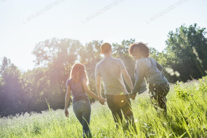 Three people walking hand in hand through long grass, in summer. Rear view.