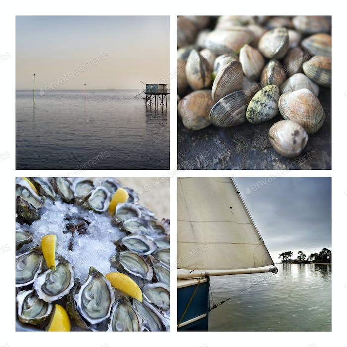 Seafood and seascapes