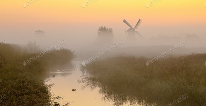 Windmill in wetland