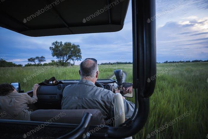 Rückansicht des Safari-Guides fahren Safari-Fahrzeug im Gras, Botwsana