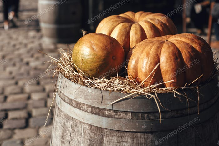 Pumpkin on barrel with hay in city street, holiday decorations store fronts