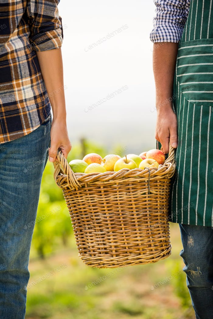 Cropped hands of man and woman holding apple basket at vineyard