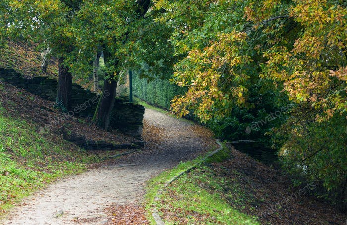 Gravel path in a public garden