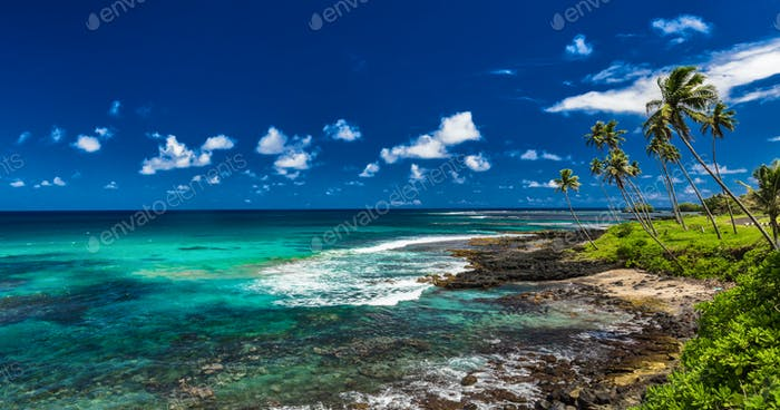 Tropical volcanic beach on Samoa Islands with palm trees, Upolu