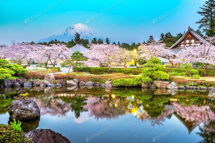 Fujinomiya, Shizuoka, Japan with Mt. Fuji and temples in spring