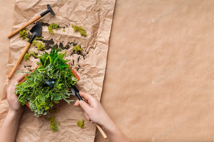 Woman planting flower in pot on craft paper
