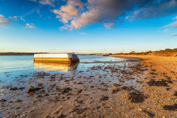 A sunny evening at Bramble Bush Bay