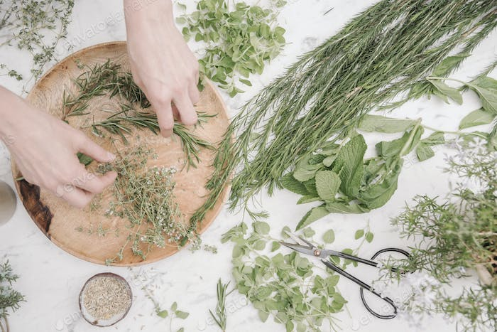 woman sorting dried herbs