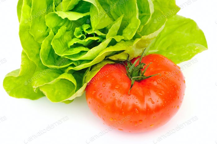Fresh tomato and green salad isolated on white background