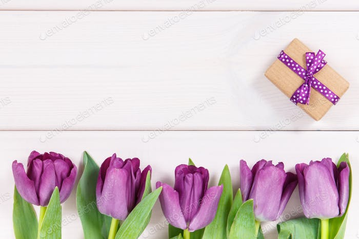 Purple tulips and gift for different occasions, copy space for text on white boards