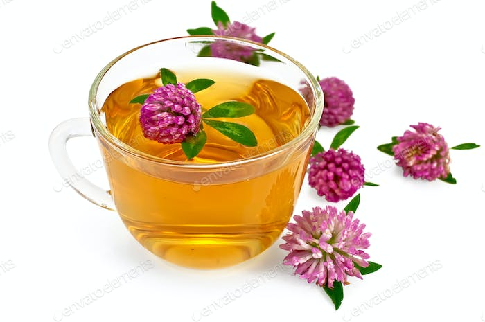 Herbal teas with clover in a glass cup