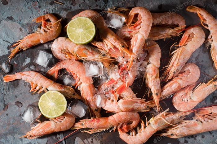 Fresh shrimps served on a gray slate with lime and ice