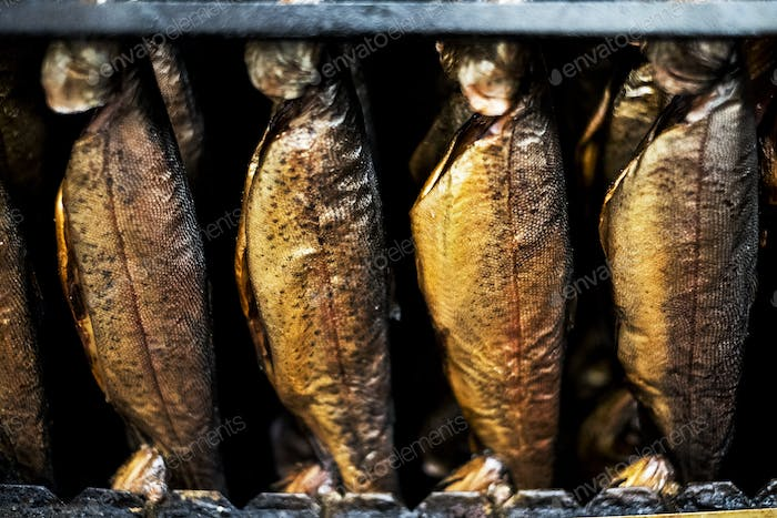Close up of rows of freshly smoked whole trout in a smoker.