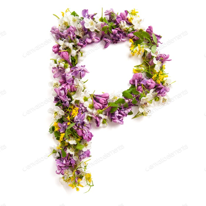 The letter «P» made of various natural small flowers.