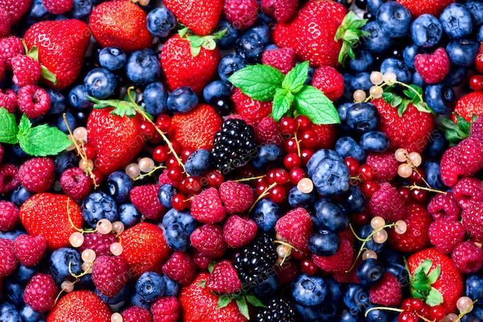 Erdbeeren, Heidelbeeren, Himbeeren und schwarze Beeren. frische Beeren auf weißem Hintergrund