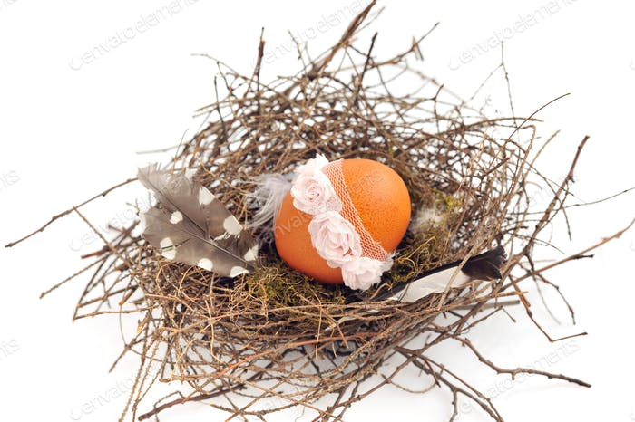 Nest with easter egg on a white background