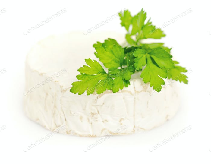 Round camembert cheese with a parsley on white background