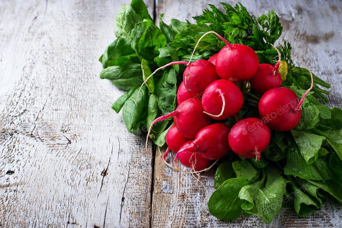 Fresh radishes, spinach and parsley