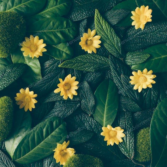 Kreatives Layout aus grünen Blättern und weißen Blumen. Flache Lag. Naturkonzept