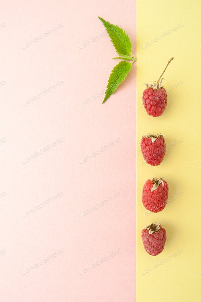 Ripe raspberries and fresh mint on pastel yellow-green backgroun