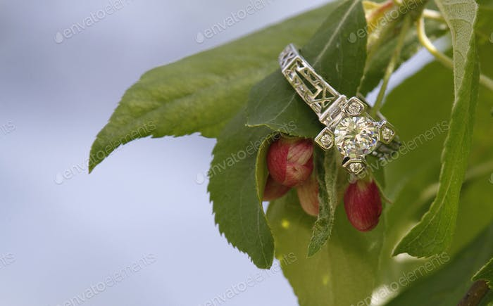 Diamond wedding ring on flower bud branch