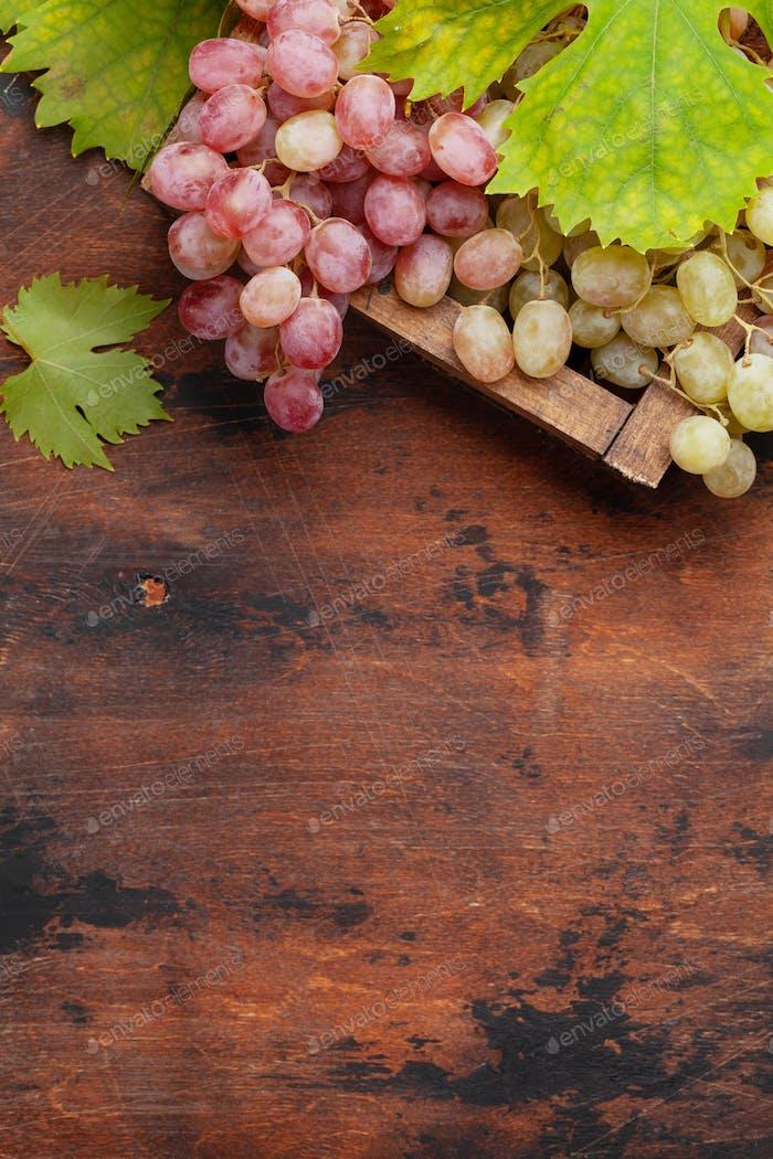 Trauben und Herbstblätter