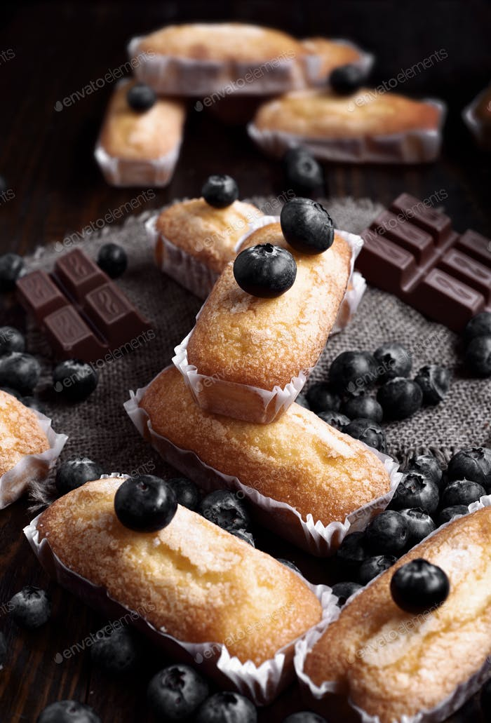 homemade sponge cakes with pieces of chocolate and blueberries on dark classic wood